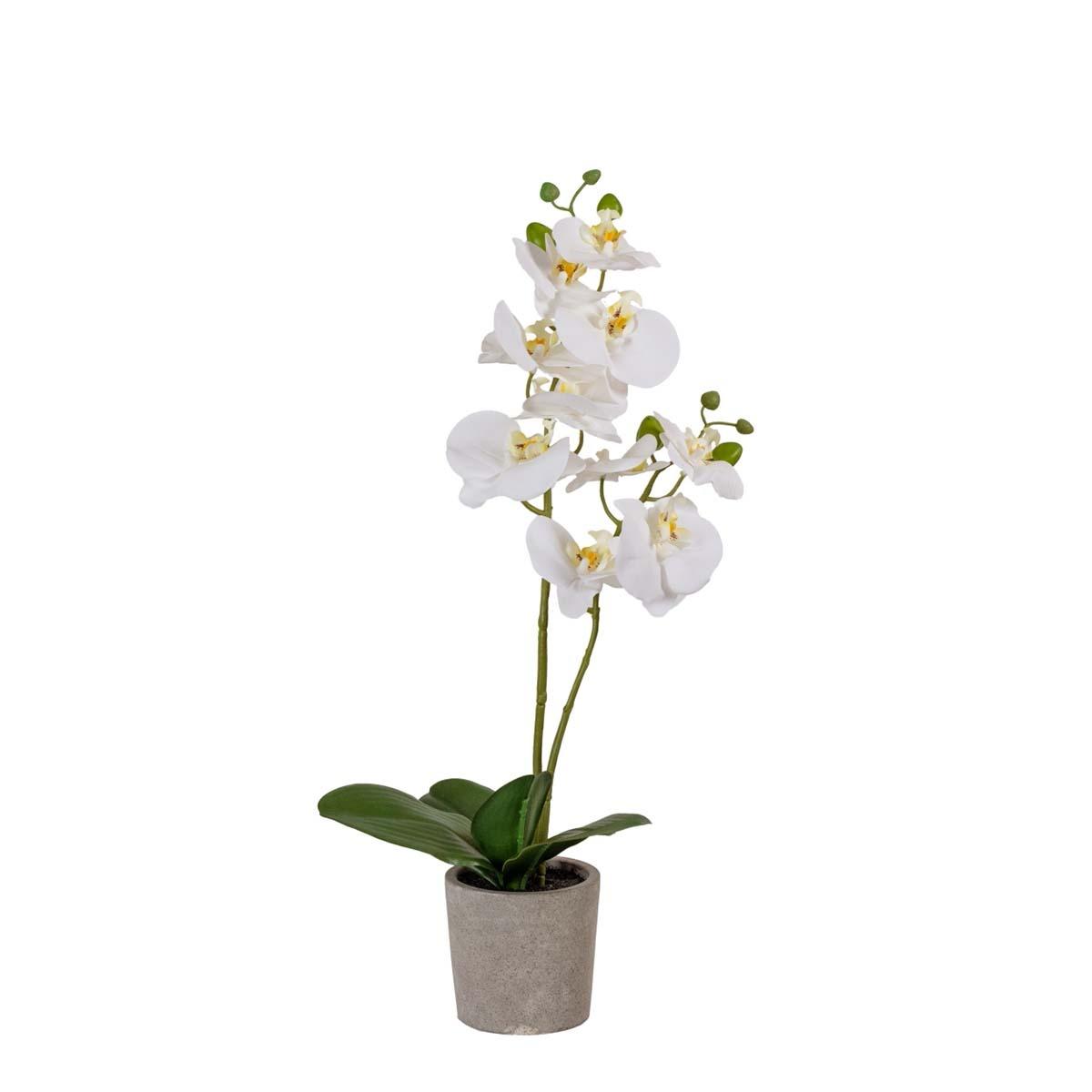 Orchidée artificielle à 2 hampes