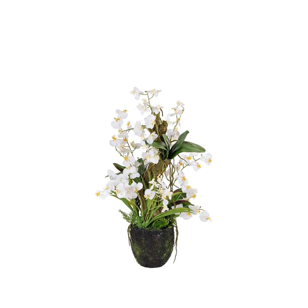 Orchidée arrangement H 80cm
