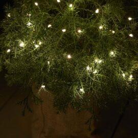 Knirke 40 LED Fil Vert
