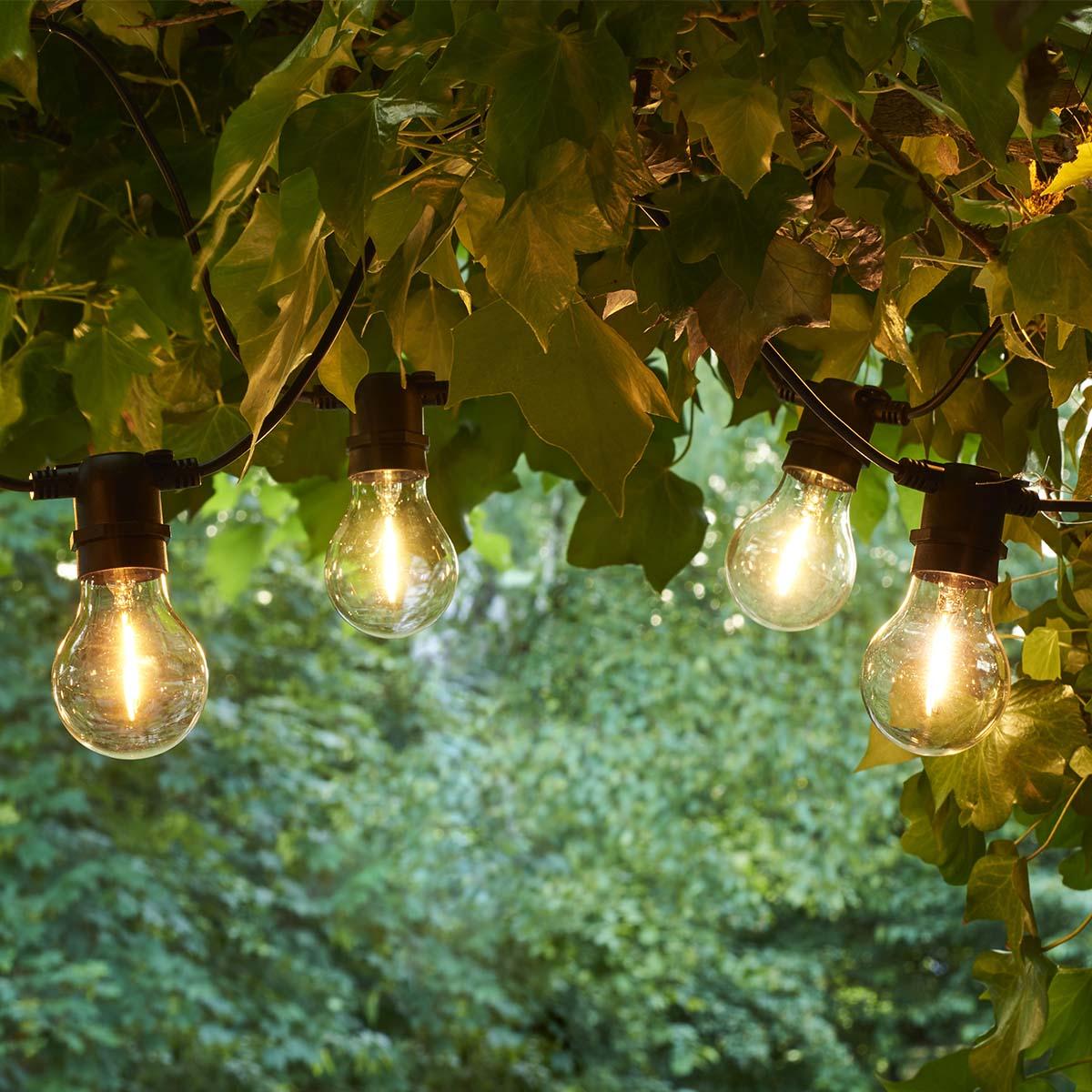 Tobias 10 lumières claires_Set de départ
