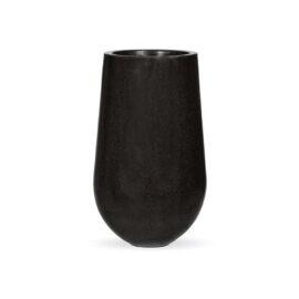 Pot palm noir