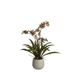 Orchidée artificielle à fleurs violettes