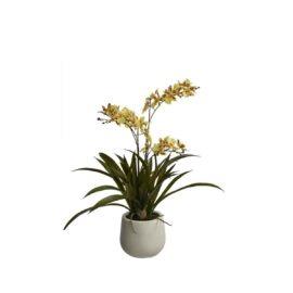 Orchidée artificielle à fleurs jaunes